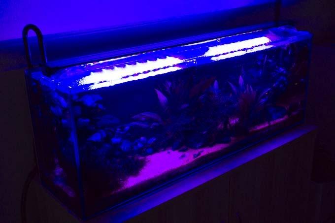 赤色LED・青色LED
