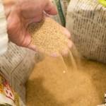 一度使った底床をもう一度使うために!洗った砂の簡単な乾かし方