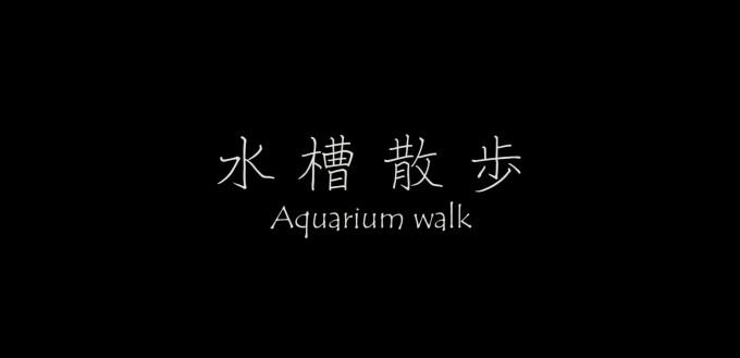 『水槽散歩 Aquarium walk』という動画を作りました