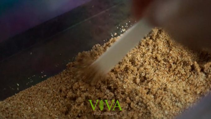 砂は定期的にかき混ぜよう